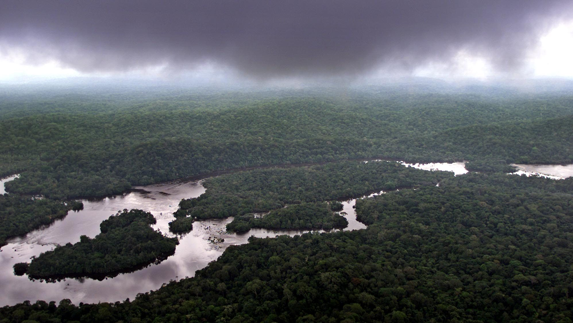 Gabon to get $150 million from Norway to protect its forests