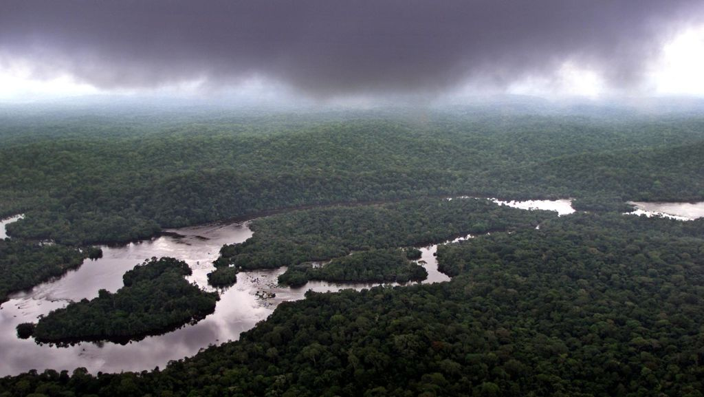 Gabon is set to become the first country in Africa to receive payments for preserved rainforests