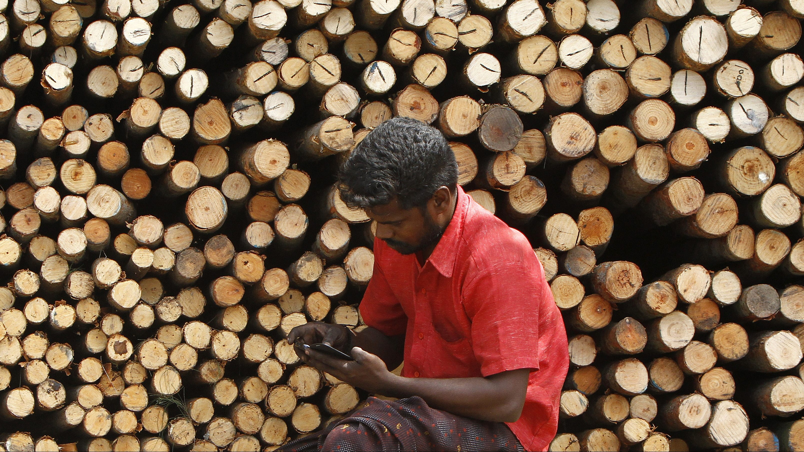 A worker uses his mobile phone as he sits in front of logs of wood for sale at a warehouse in Chennai
