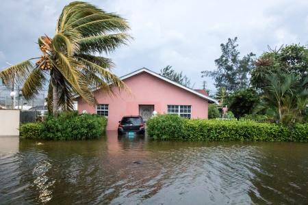 A palm tree bends in the wind next to a flooded street in Nassau on Sept. 2.