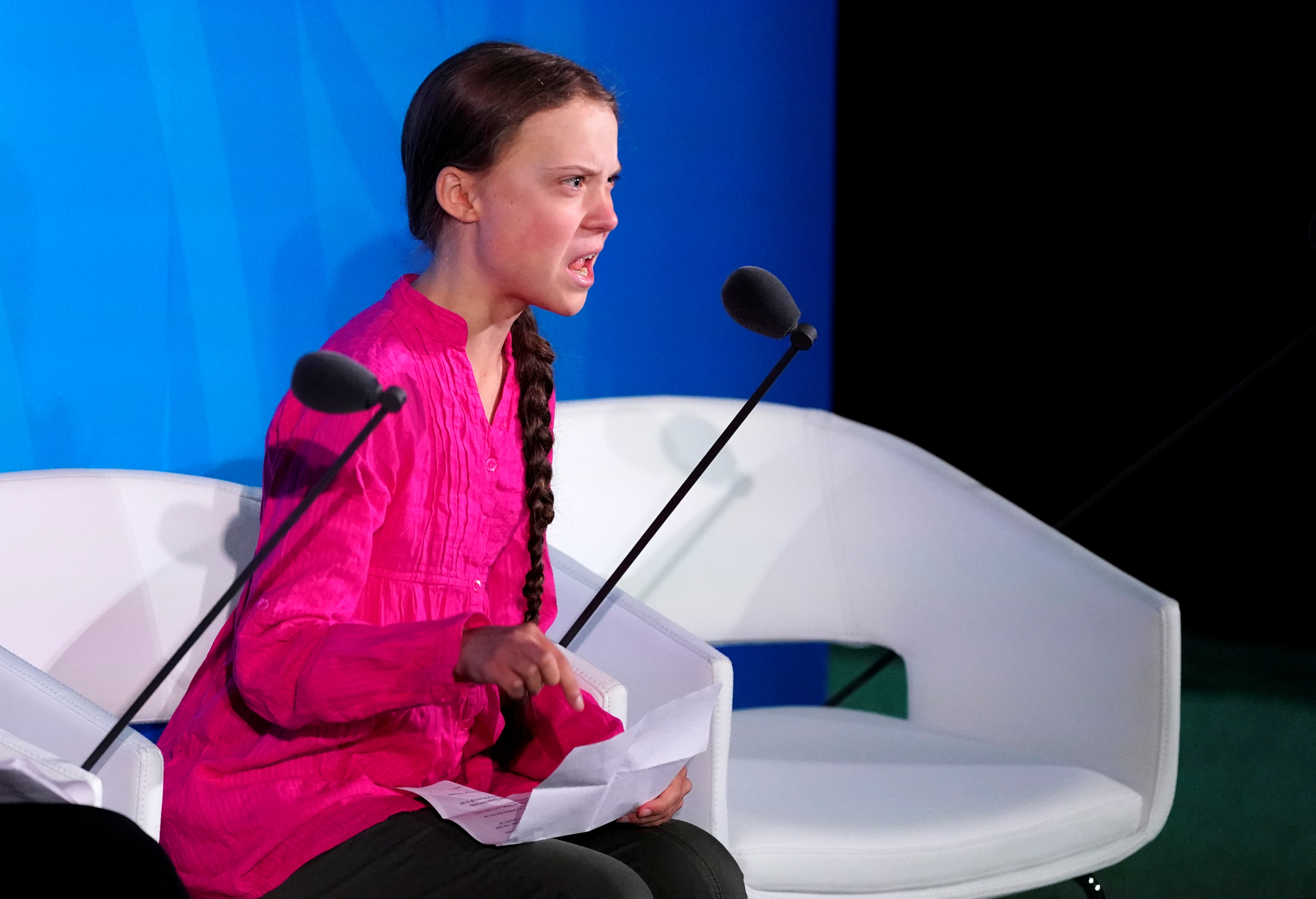 Thunberg at the UN climate action summit