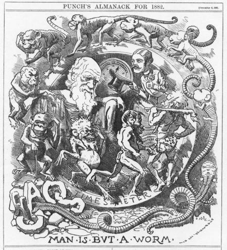'Man Is But A Worm' caricature of Darwin's theory