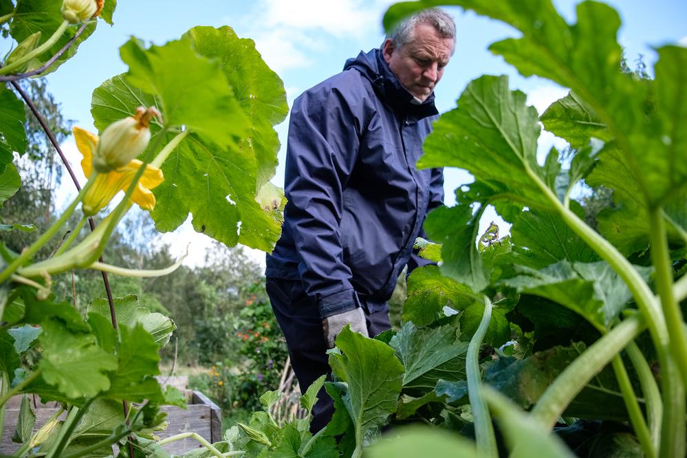 A gardener and local activist tending allotment
