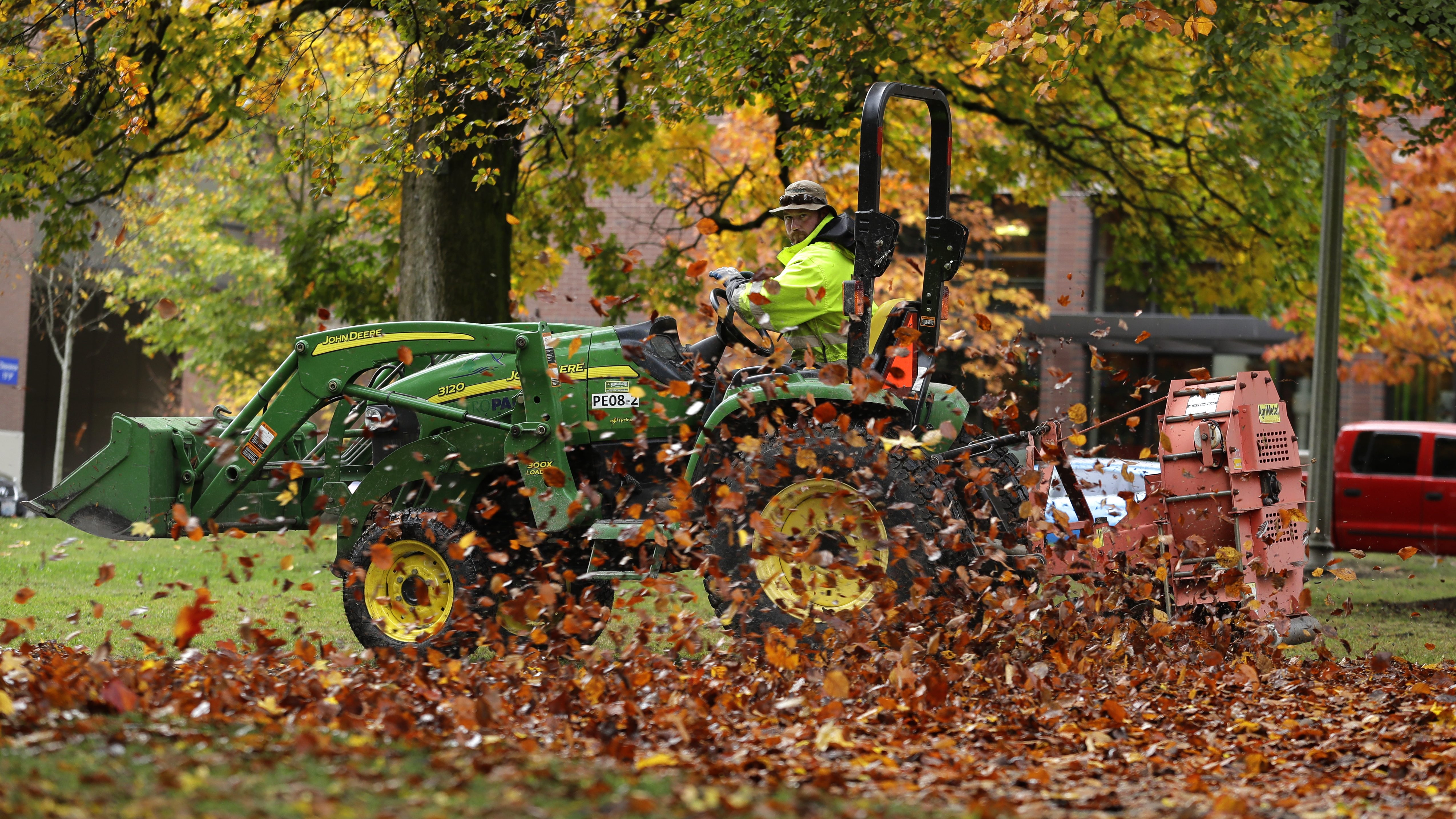 More brave towns are putting a stop to the tyranny of leaf blowers — Quartz