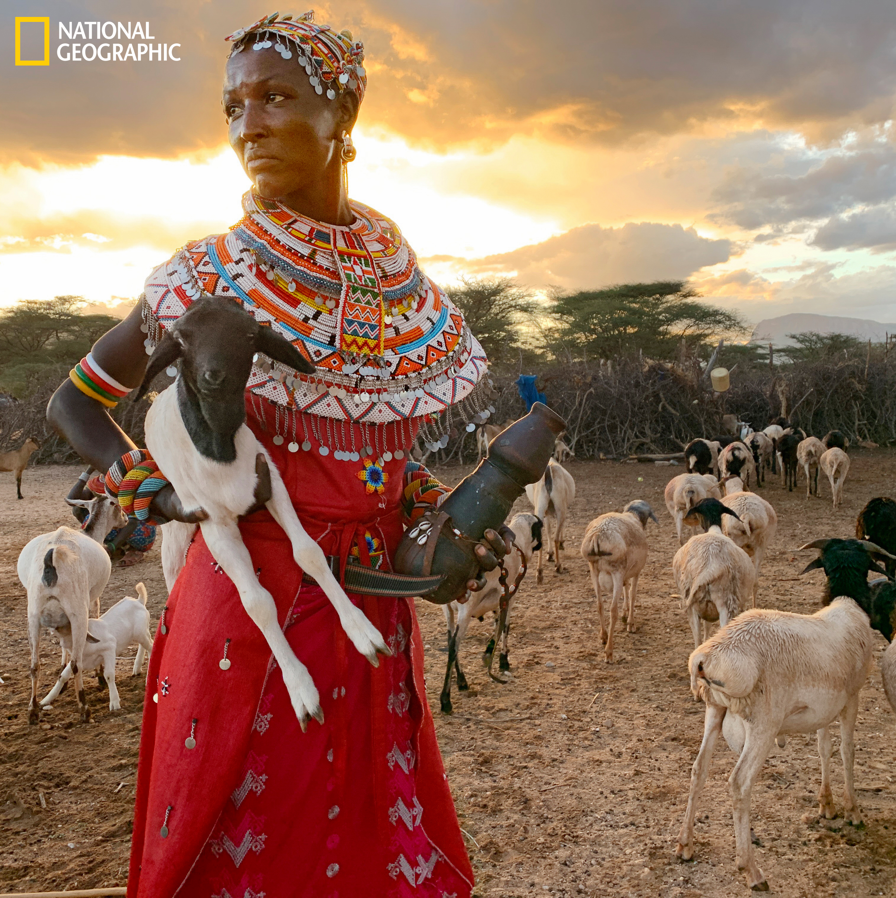 "A mother of three at 23, Mpayon Loboitong'o herds her family's goats on her own; after her husband left to find work in Nairobi, she was told he'd been killed there. Her other full-time job: charting animal movements for Save the Elephants. For a monthly salary she and eight other women traverse the bush, unarmed, amid elephants, lions, and African buffalo. ""I do this work so my kids don't go to bed hungry,"" she says."