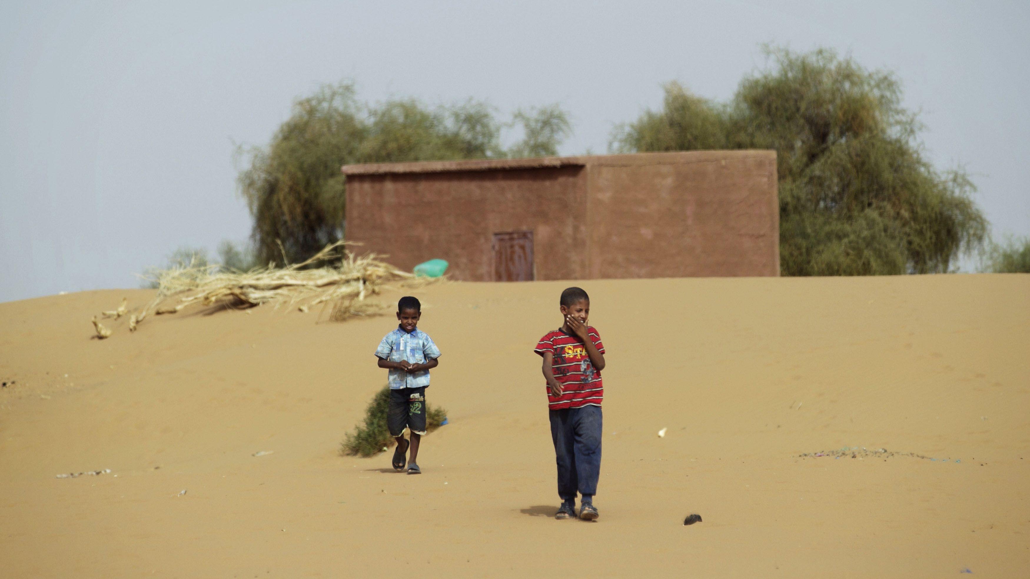 West Africa's Sahel vulnerable to climate change, bad governance - Quartz Africa