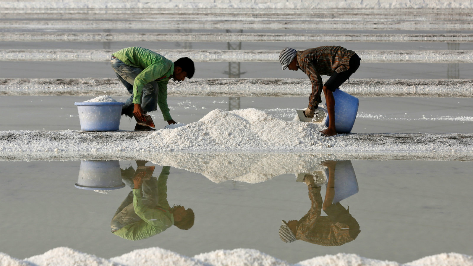 Mumbai's salt pans may soon fall by in big BJP real estate plans