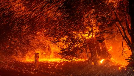 A photographer takes photos amidst a shower of embers as wind and flames rip through the area during the Kincade fire near Geyserville, California.