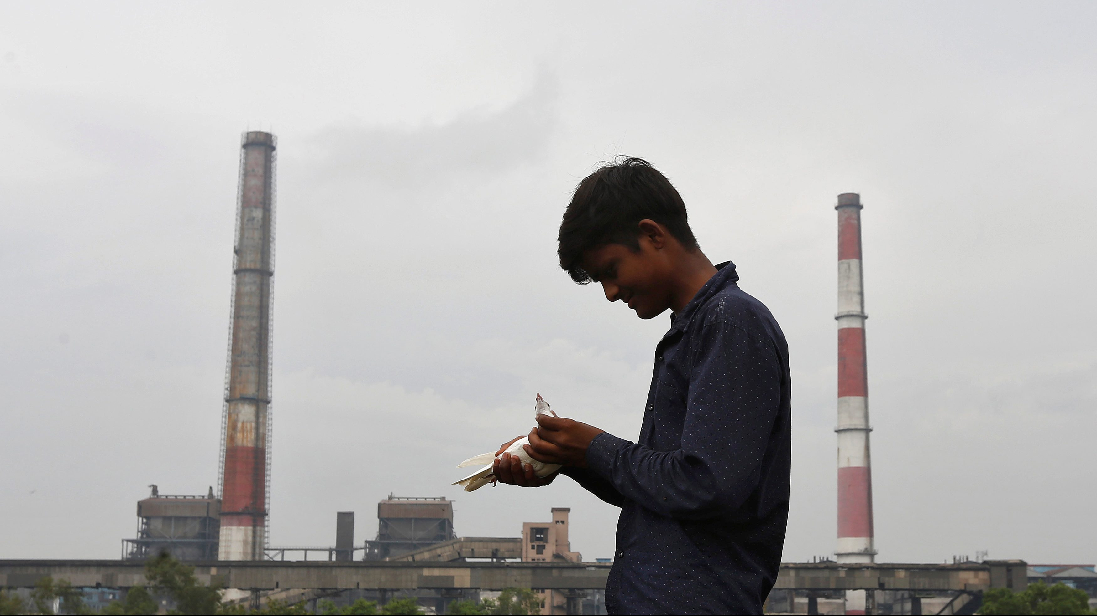 India's clean energy units save more lives than US and China's