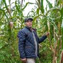A campesino with rare varieties of maize