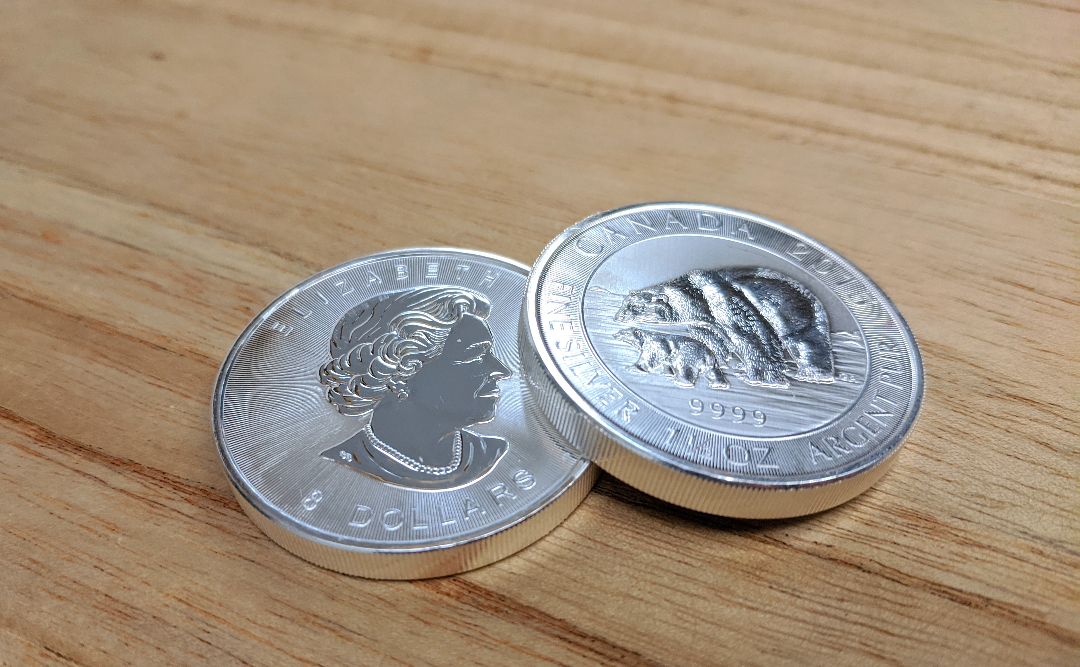 Two silver coins, with a polar bear and a cub on one side.