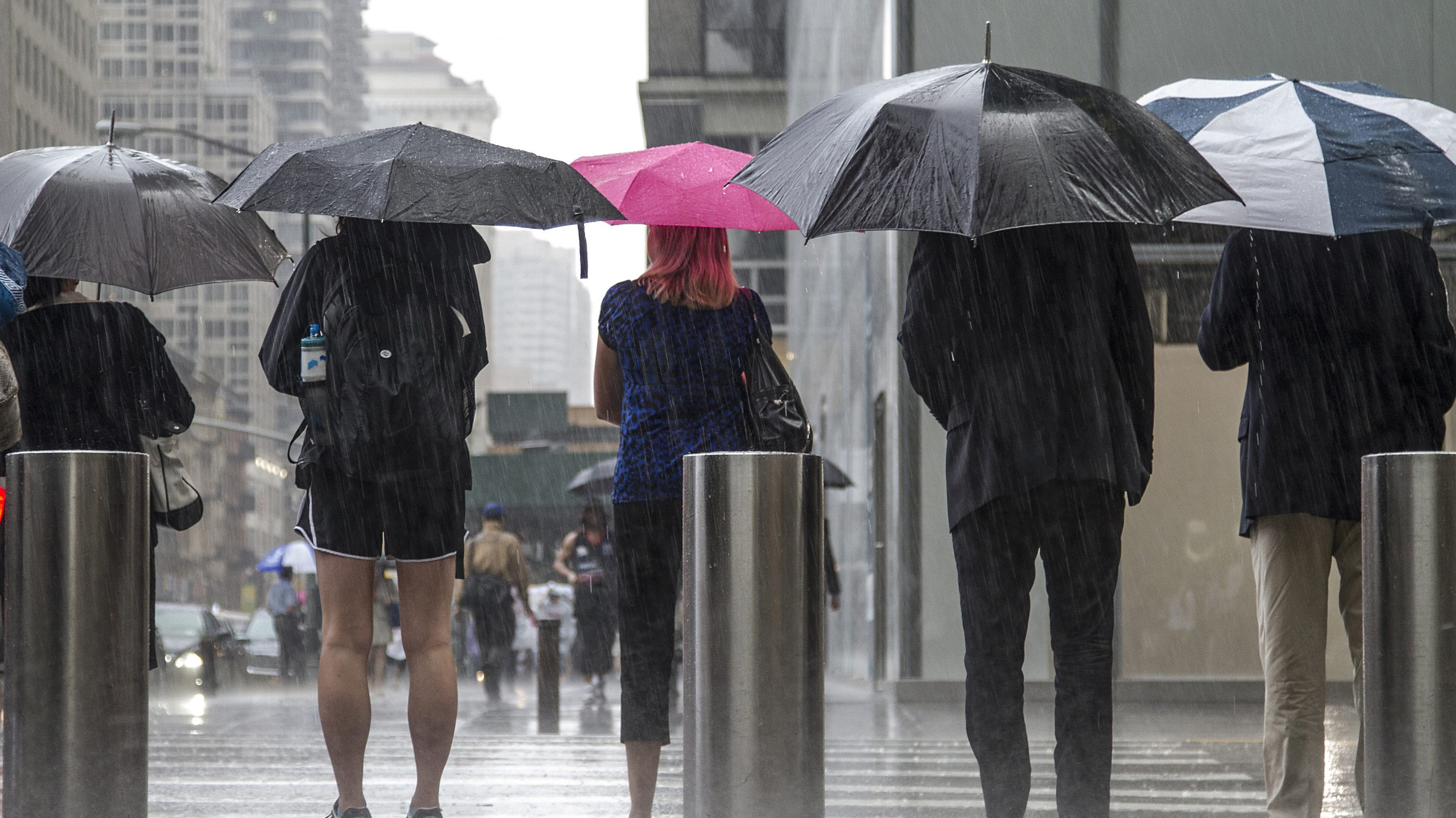 People use umbrellas as a downpour of rain falls during the afternoon rush hour in New York