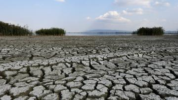 A dried-out part of Lake Koronia, Greece,