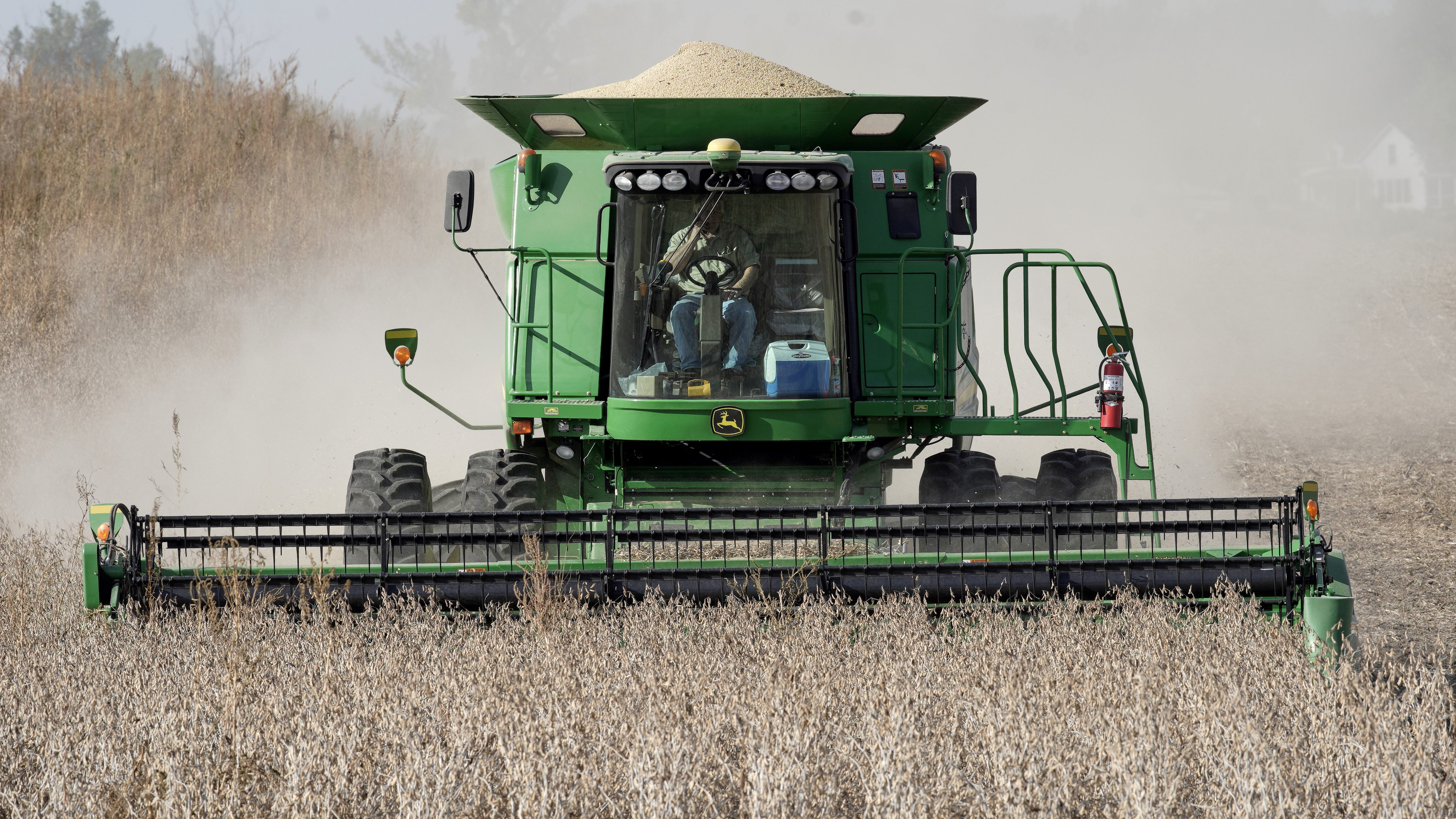 A combine harvests soybeans