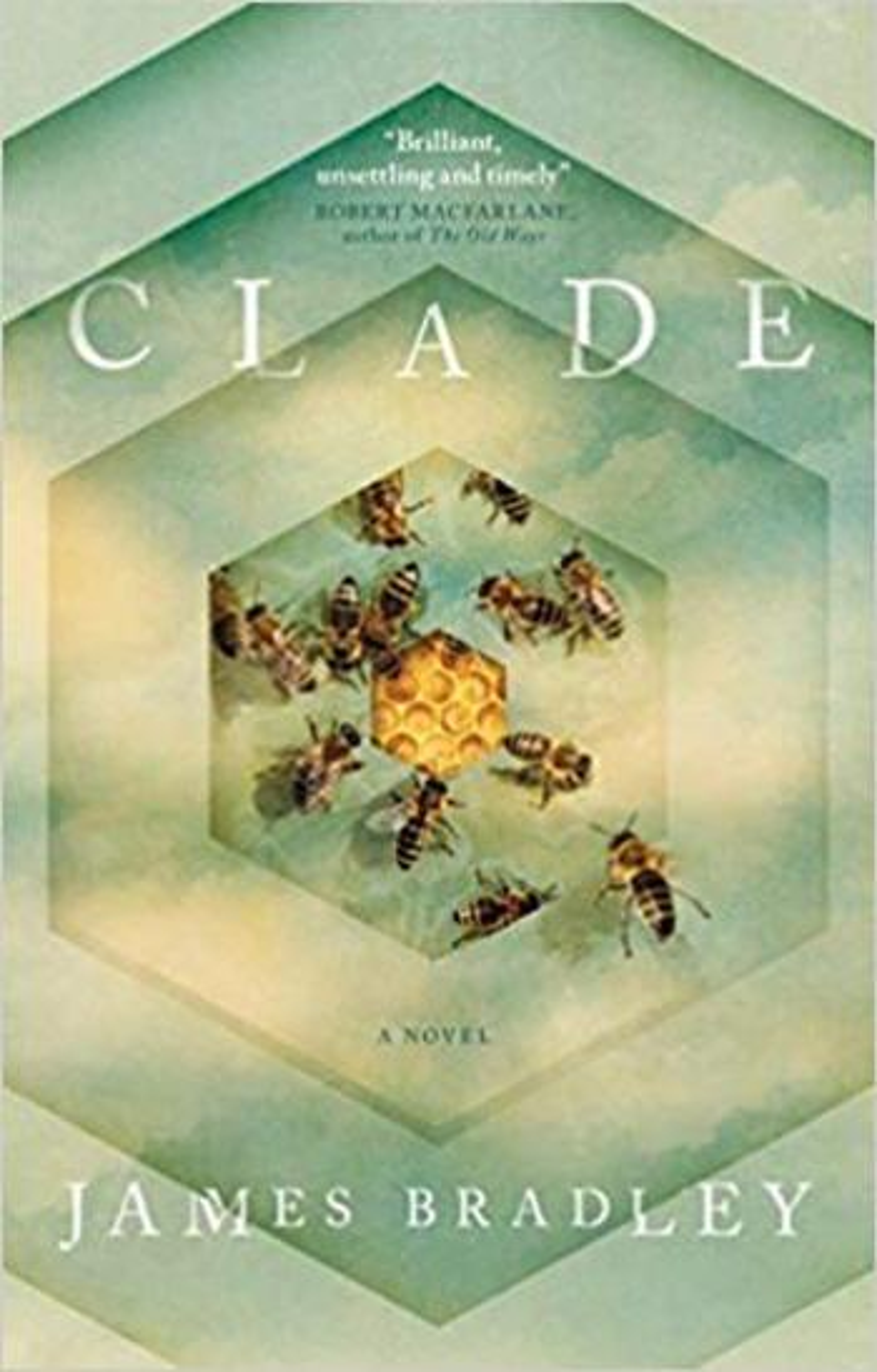 The novel Clade