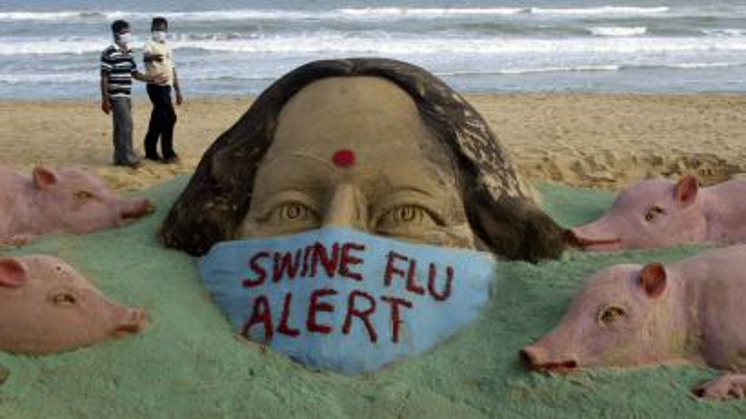 India Swine Flu
