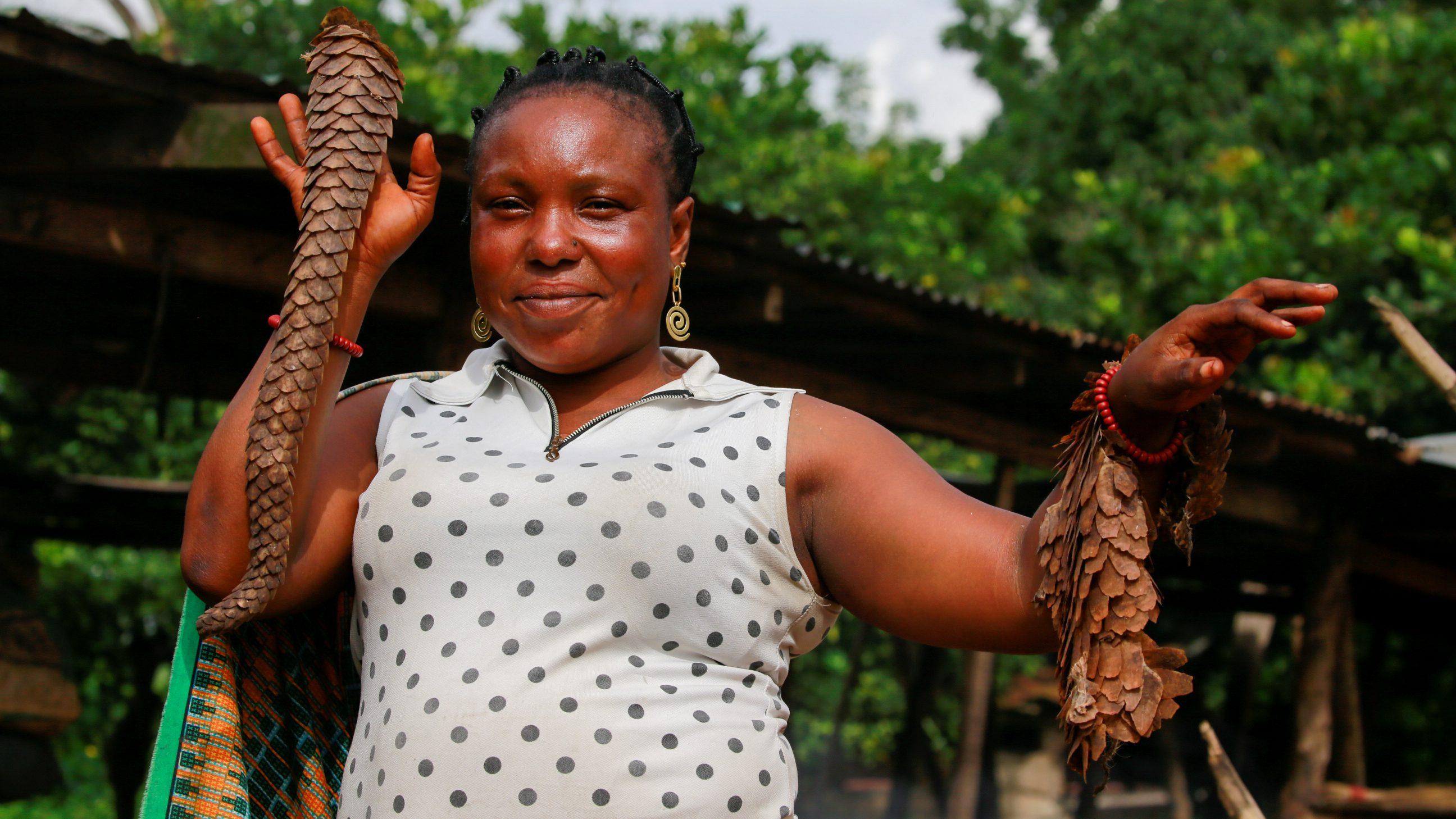 Despite coronavirus fears, Nigeria has taken no action to stop its pangolin trade