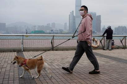 A man wearing a mask walks his dog in Hong Kong, Friday, March 6, 2020. Pet cats and dogs cannot pass the new coronavirus to humans, but they can test positive for low levels of the pathogen if they catch it from their owner.