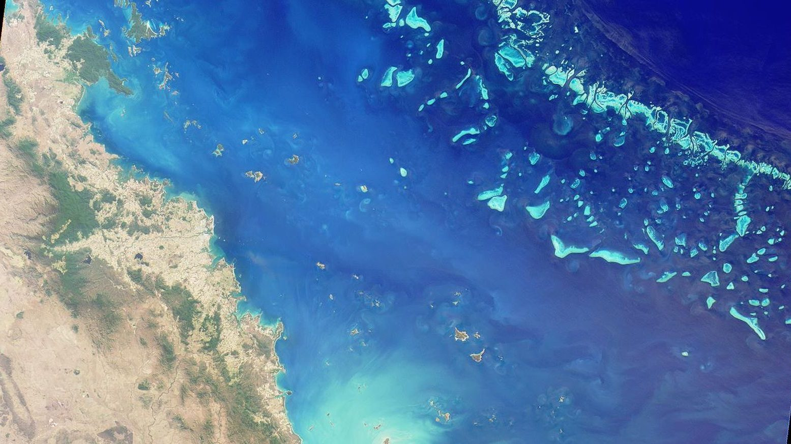This is likely the last generation to see the Great Barrier Reef as humans have known it