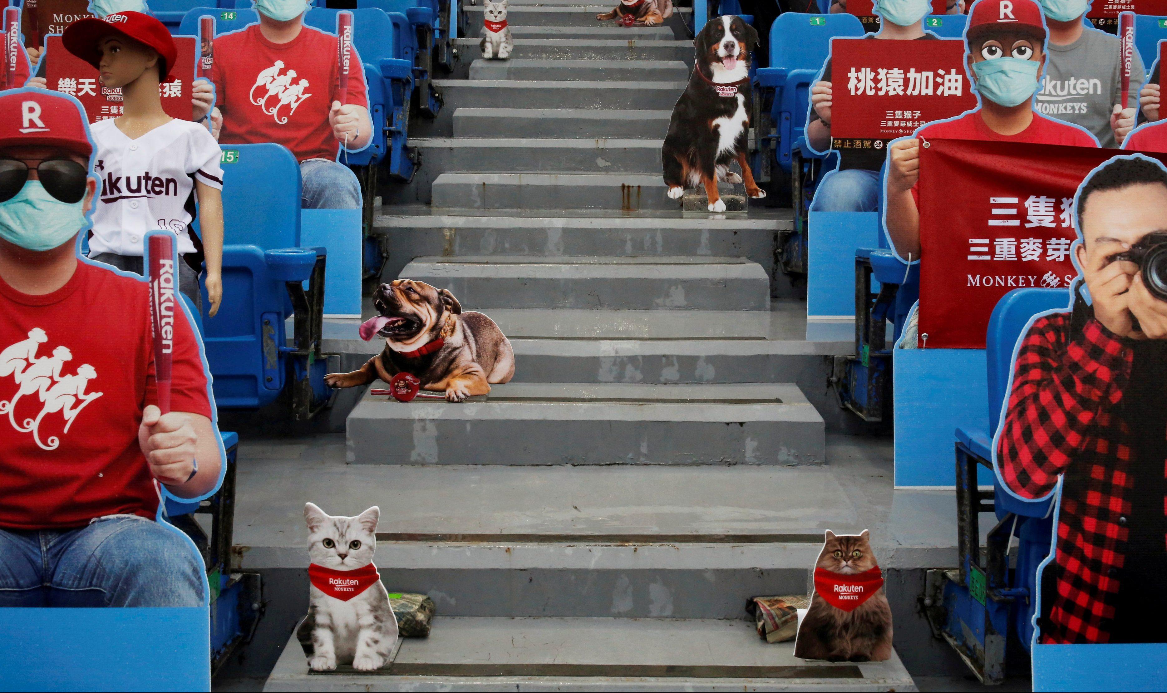 Baseball fans turn to Taiwan pro league for entertainment — Quartz