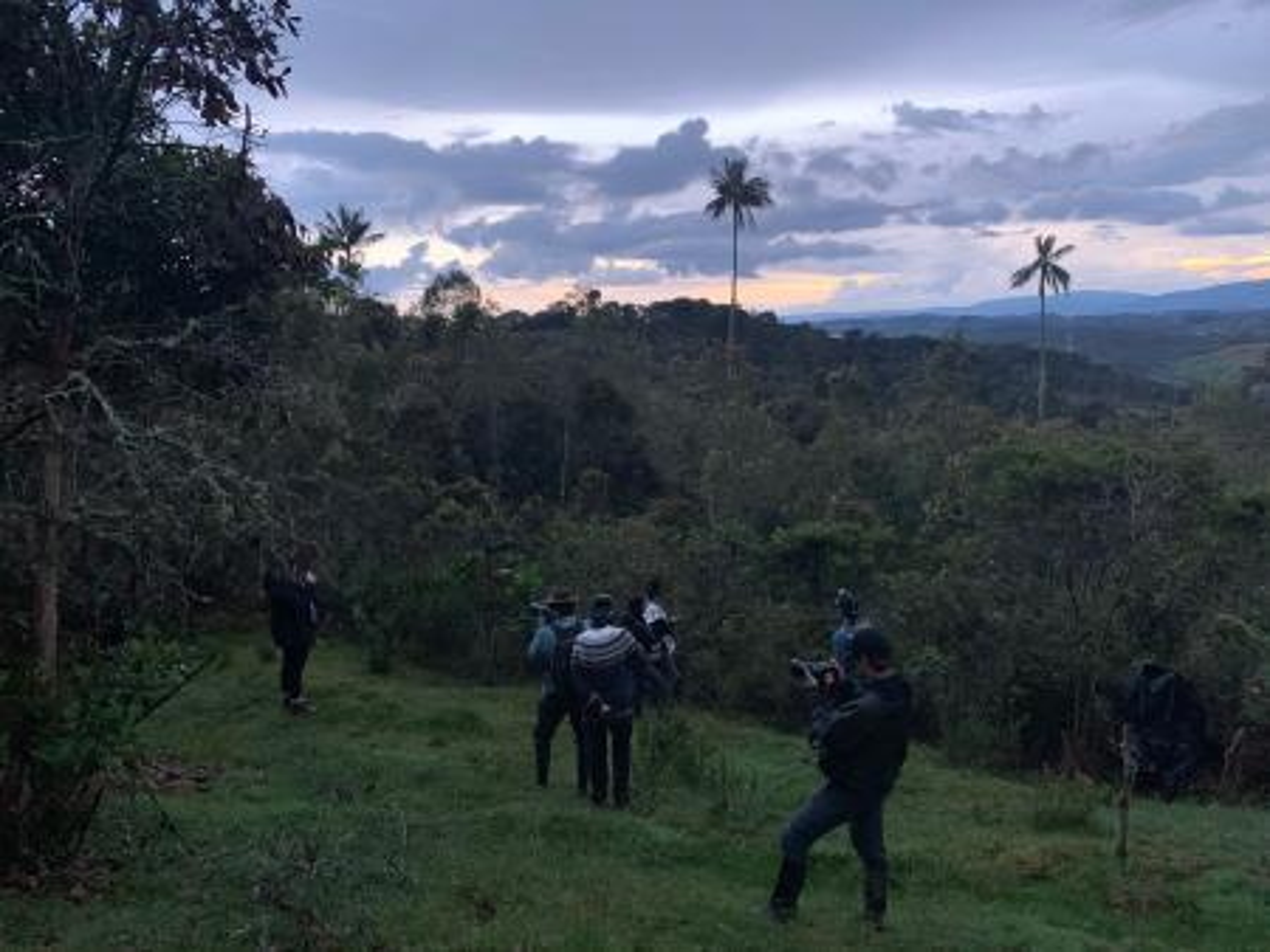 Observação de aves na Colômbia ao pôr do sol