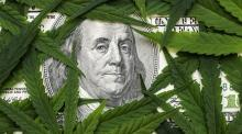 The face of Benjamin Franklin on the hundred dollar banknote among cannabis leaves.