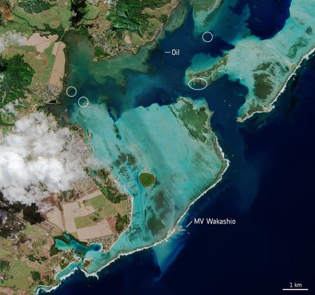 Satellite image of the MV Wakashio, visible at the bottom of the image, is seen stranded close to Pointe d'Esny, Mauritius in this image taken on Aug. 11, 2020 by the Copernicus Sentinel-2 mission.