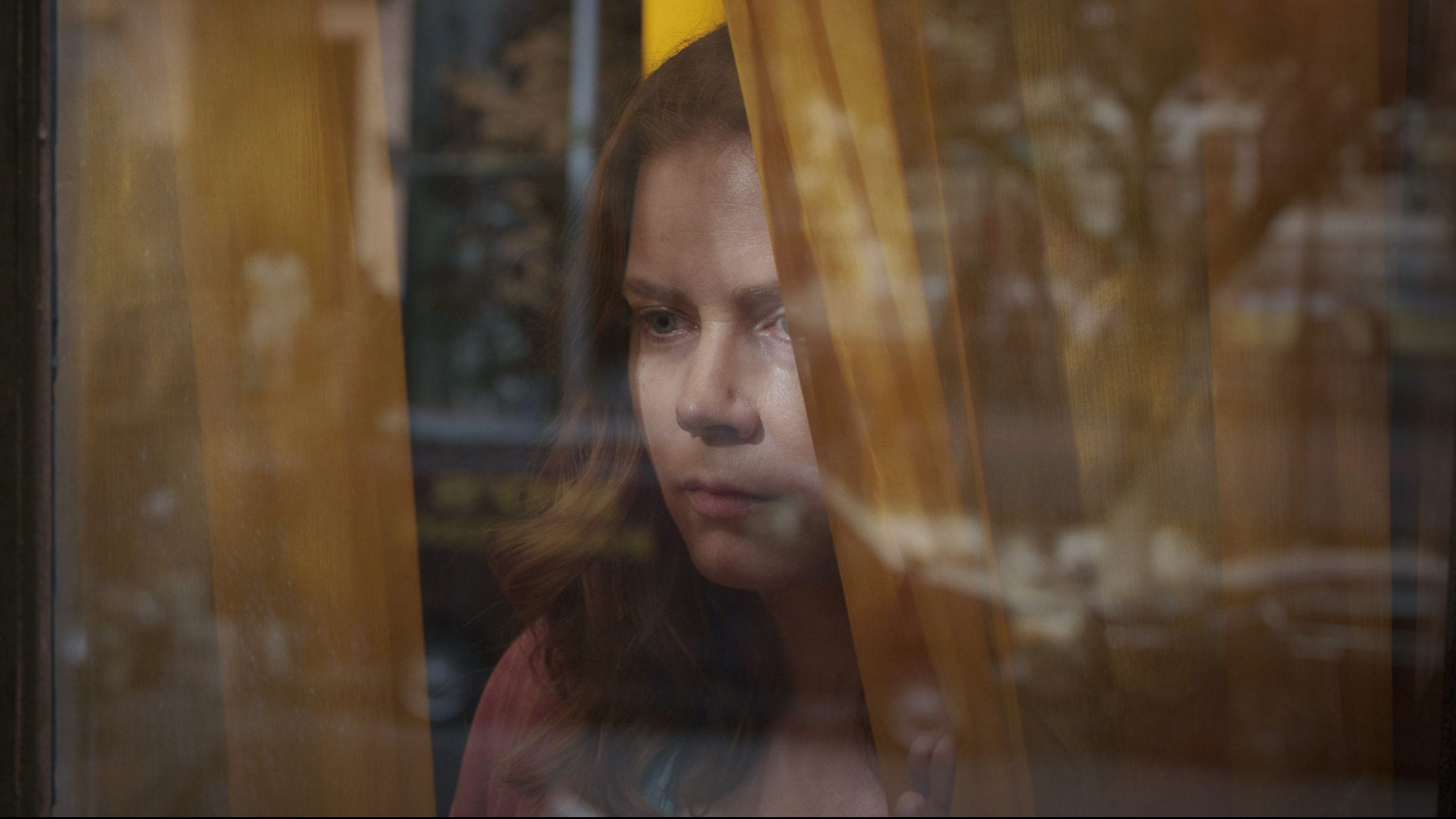 amy adams the woman in the window