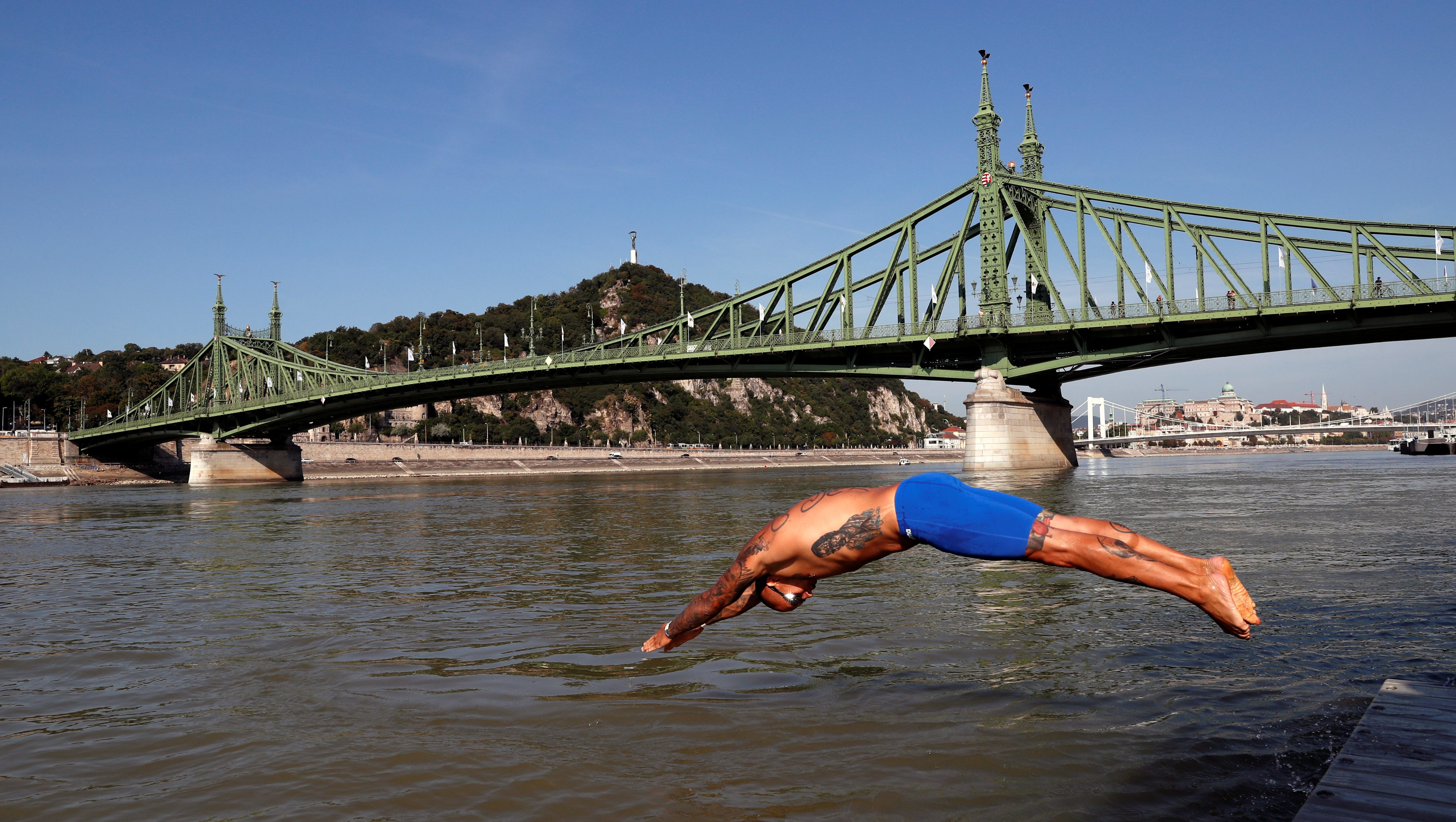 A swimmer dives into the Danube River on August 29, 2020.