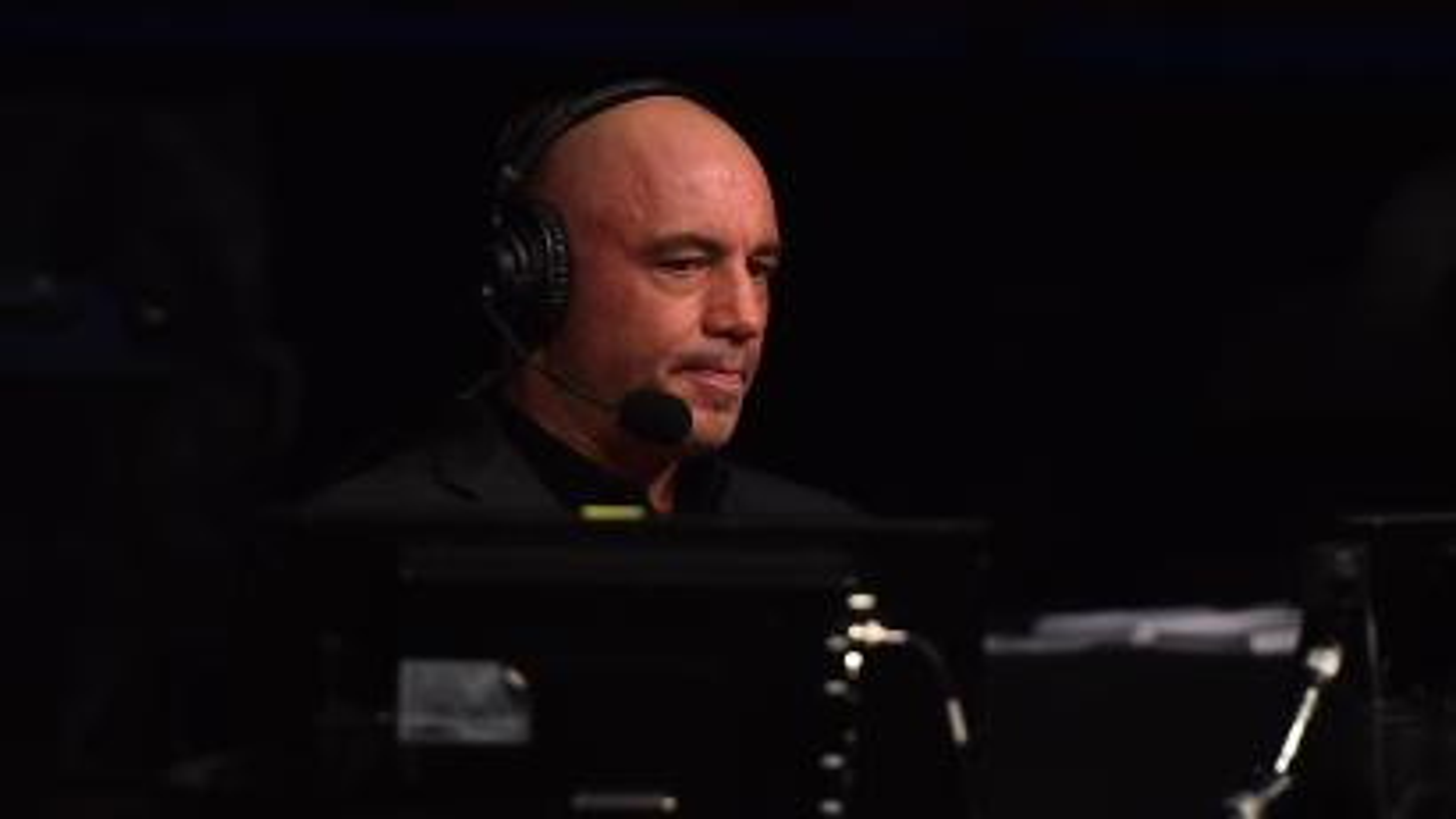 The podcast host Joe Rogan