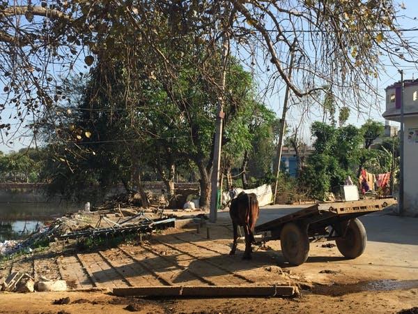 Uma aldeia perto de Thanesar em Kurukshetra, Haryana, onde conheci uma das mulheres com quem falei.