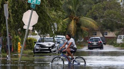 A man rides his bike down a flooded palm-tree lined street, through water that swallows up half of his tires.