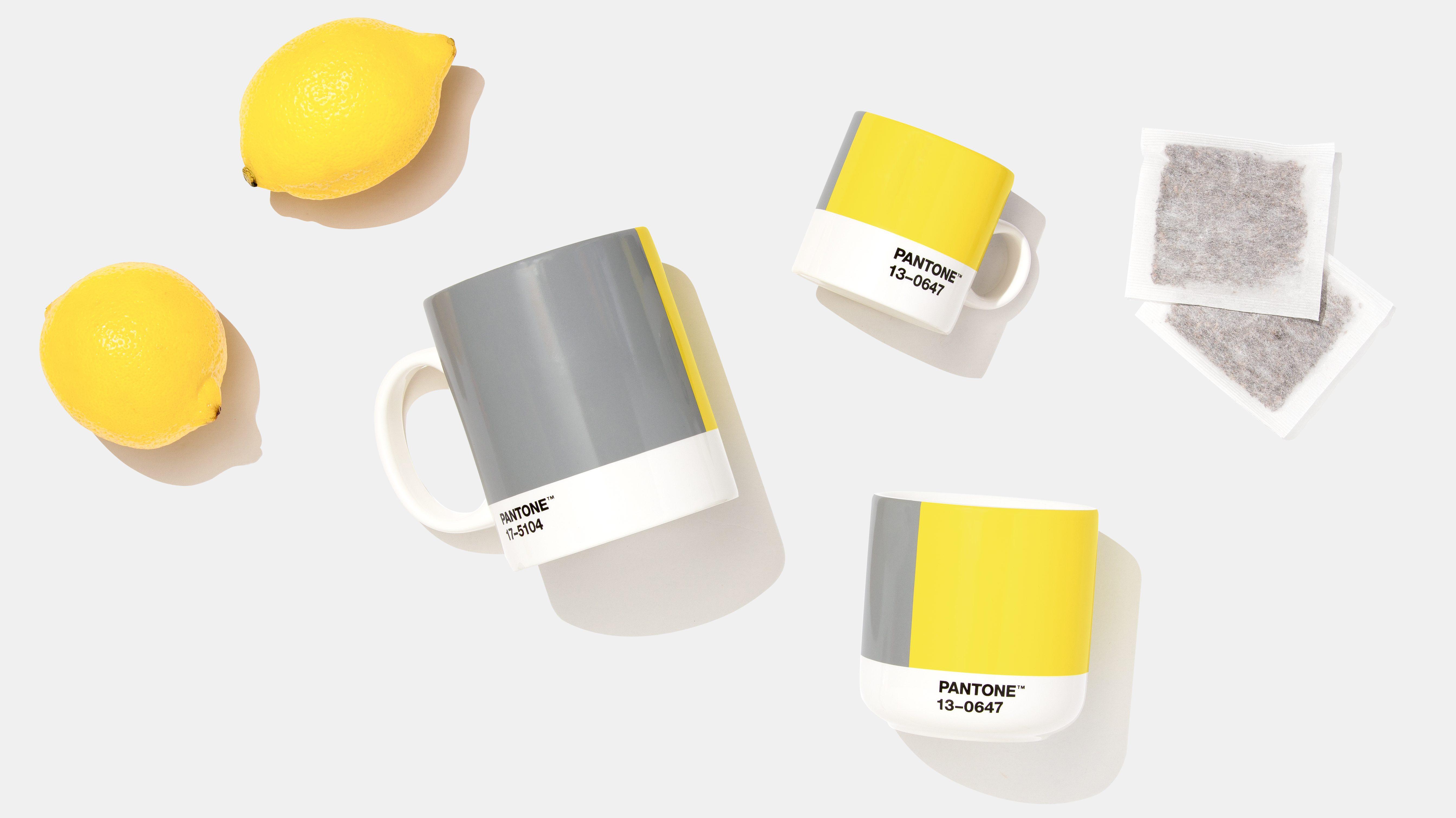 Pantones 2021 color picks: Ultimate Gray and Illuminating yellow