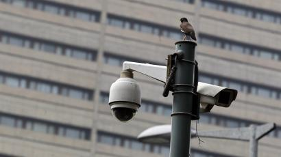 A bird sits atop a closed-circuit television (CCTV) camera pole at a traffic intersection in New Delhi