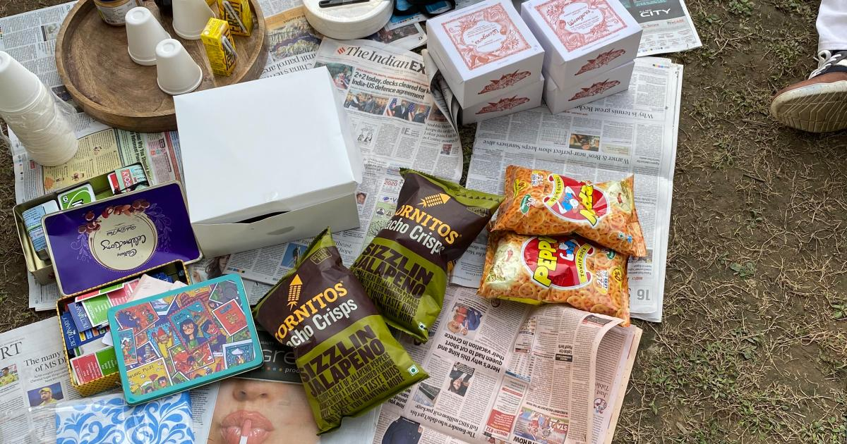 The pandemic has made Delhi's forgotten tradition of picnics cool again thumbnail
