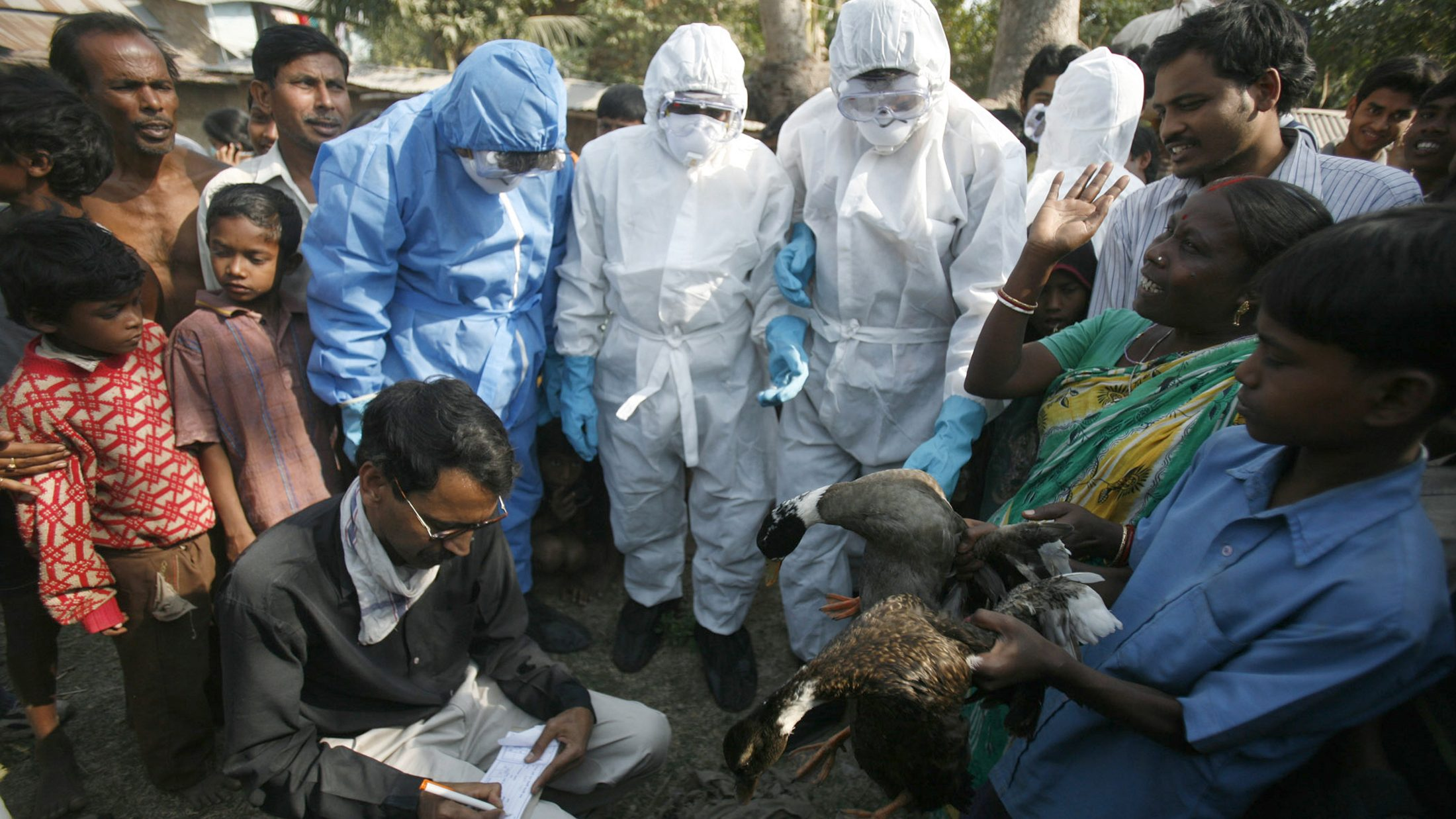 Indian teachers also work on bird flu and Covid-19 response