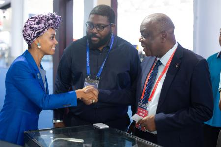 Hannah Wanjie Ryder is pictured shaking hands with delegates.