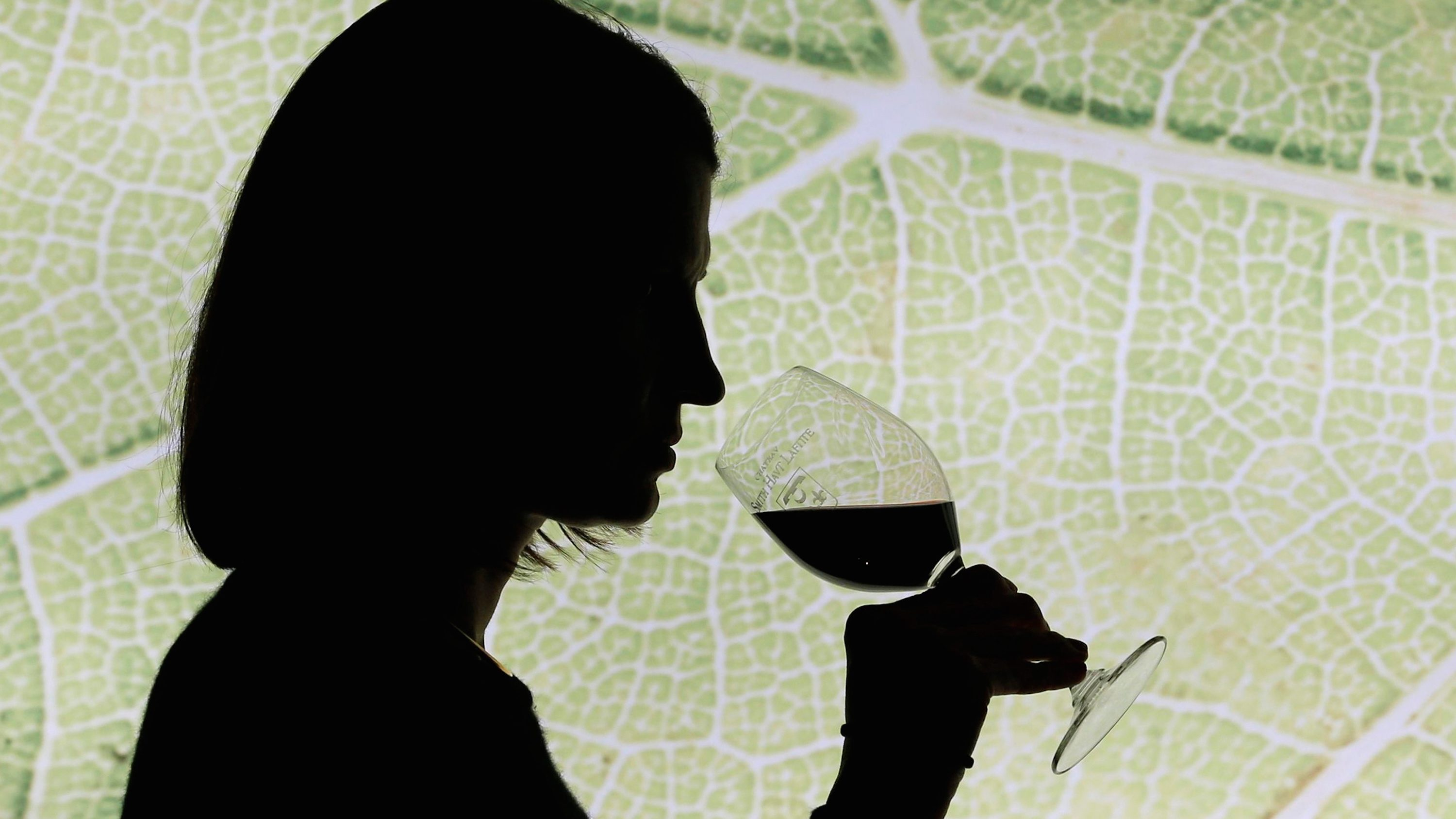 silhouette of woman with wine glass