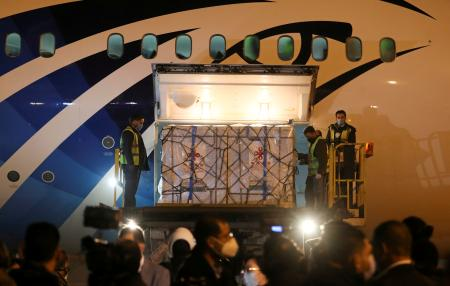 Workers offload pallets containing Sinopharm vaccine doses as they arrive from China in Cairo in February.