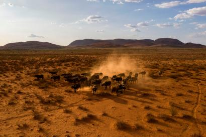 An aerial view of the northern cape province of South Africa, at the gateway to the Kalahari Desert.
