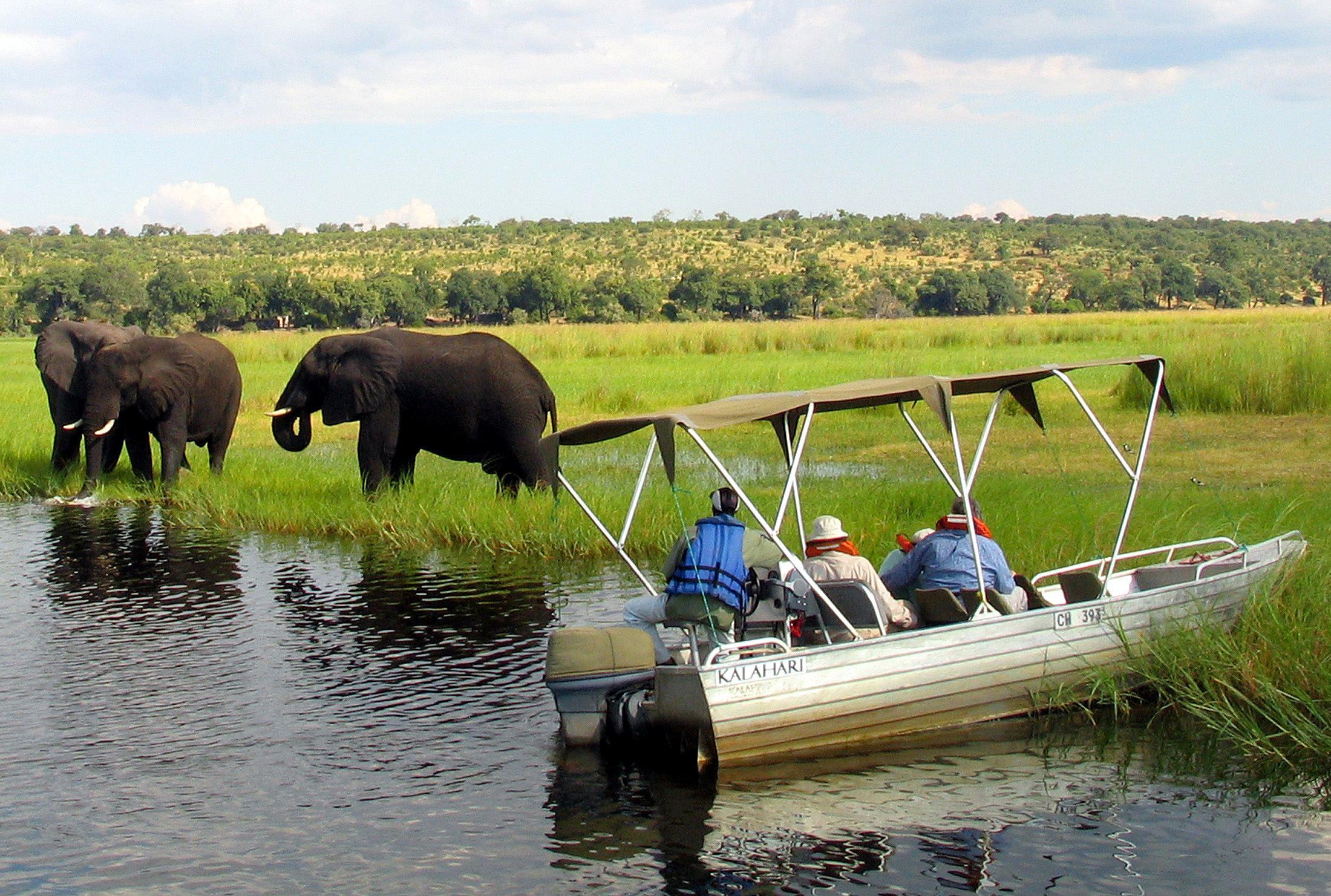 Foreign tourists observe elephants along the Chobe river bank near Botswana's northern border where Zimbabwe, Zambia and Namibia meet.