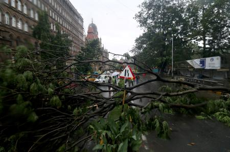 People stand next to a fallen tree after heavy winds caused by Cyclone Tauktae in Mumbai
