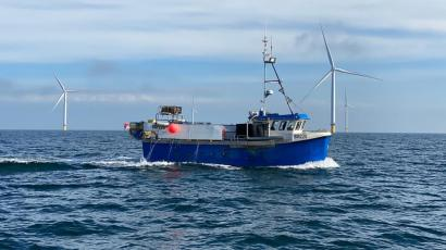 A blue fishing boat is in the Bridlington fishery with an offshore wind farm in the distance.