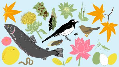 An illustration of animals, plants, and flowers significant to the microseasons mentioned in the piece.