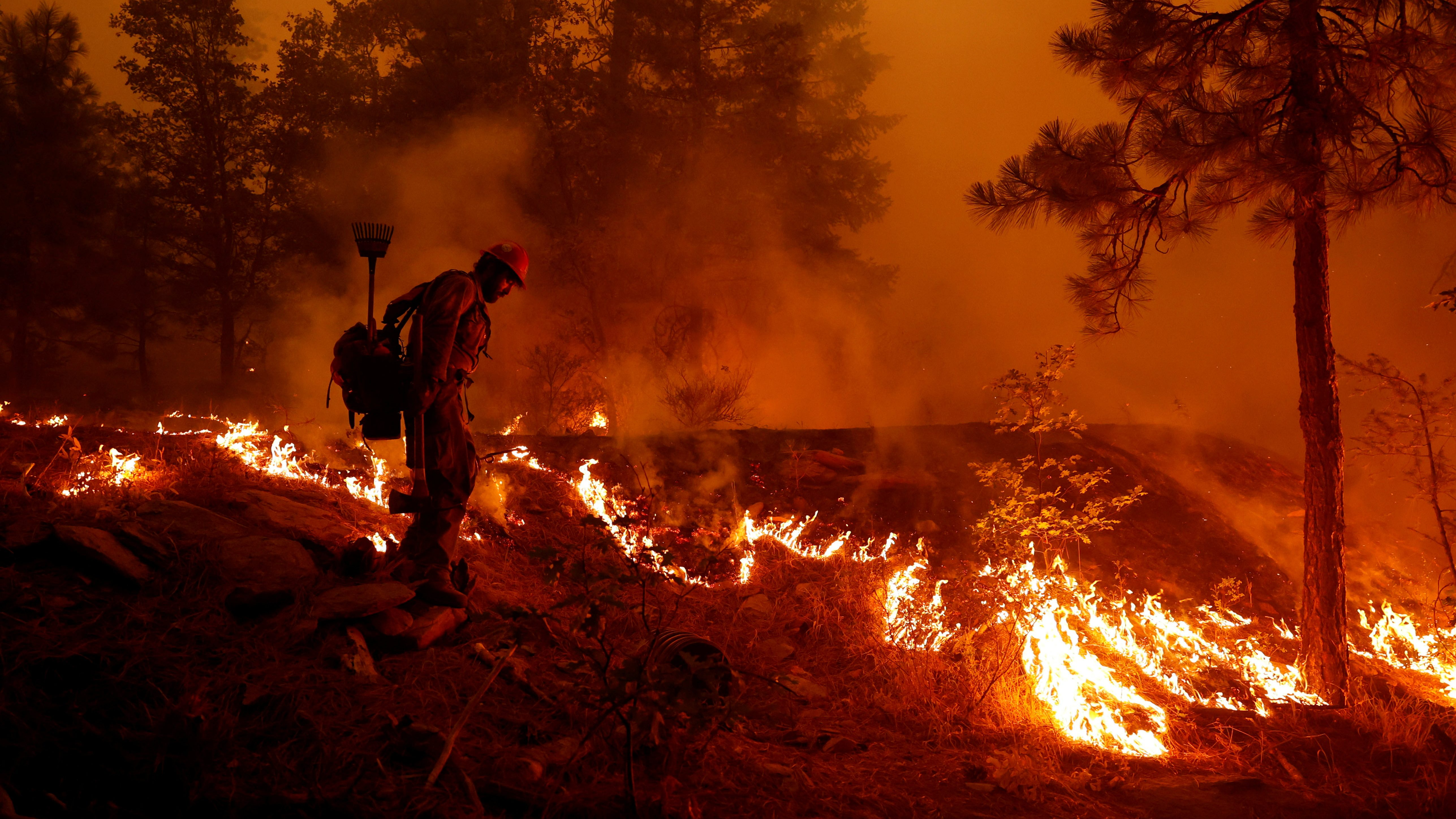 The drought and heat that are fueling record wildfires in California are almost certainly the result of climate change, IPCC scientists say.