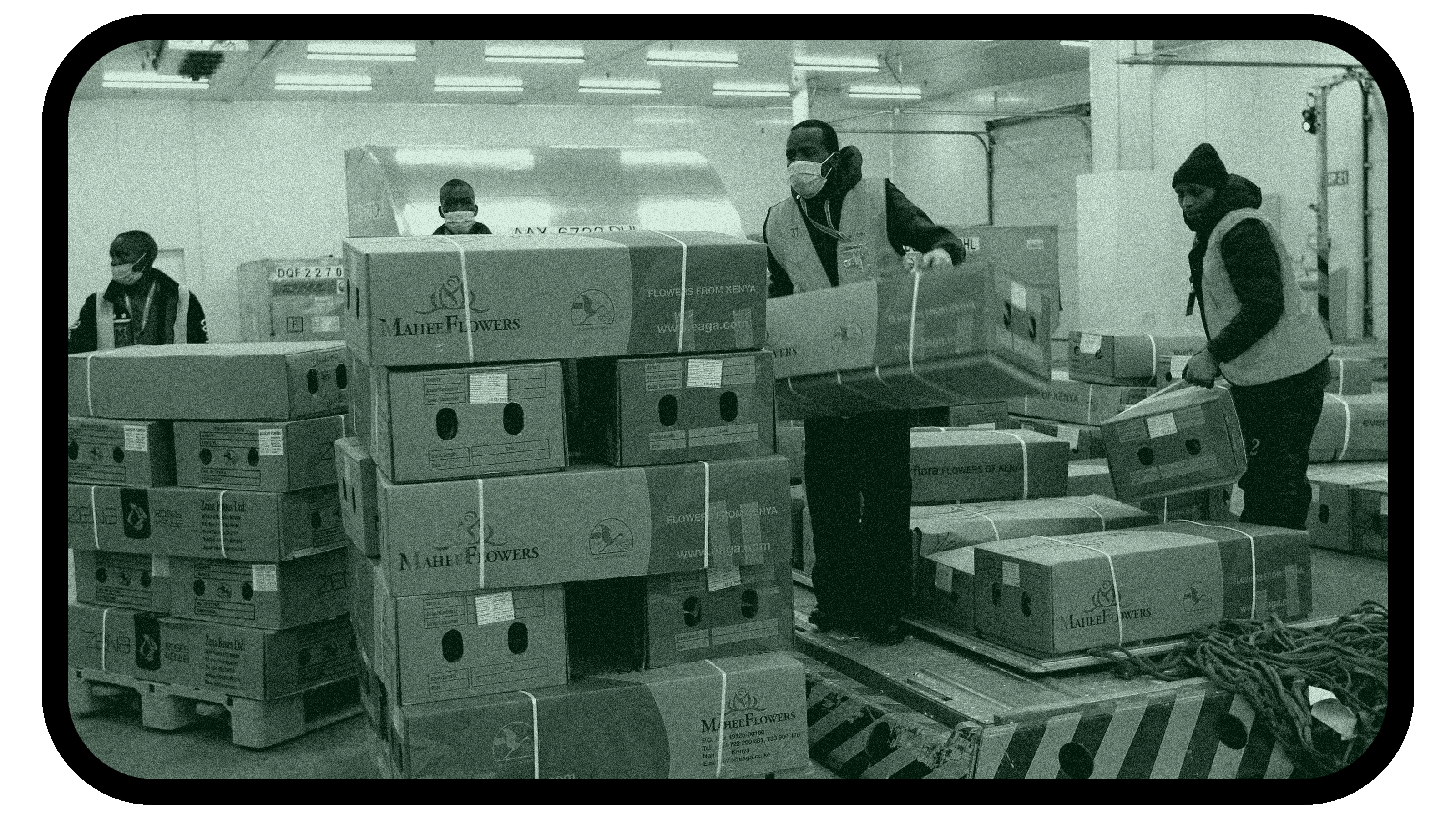 A picture of workers in a warehouse loading cartons of goods on a machine