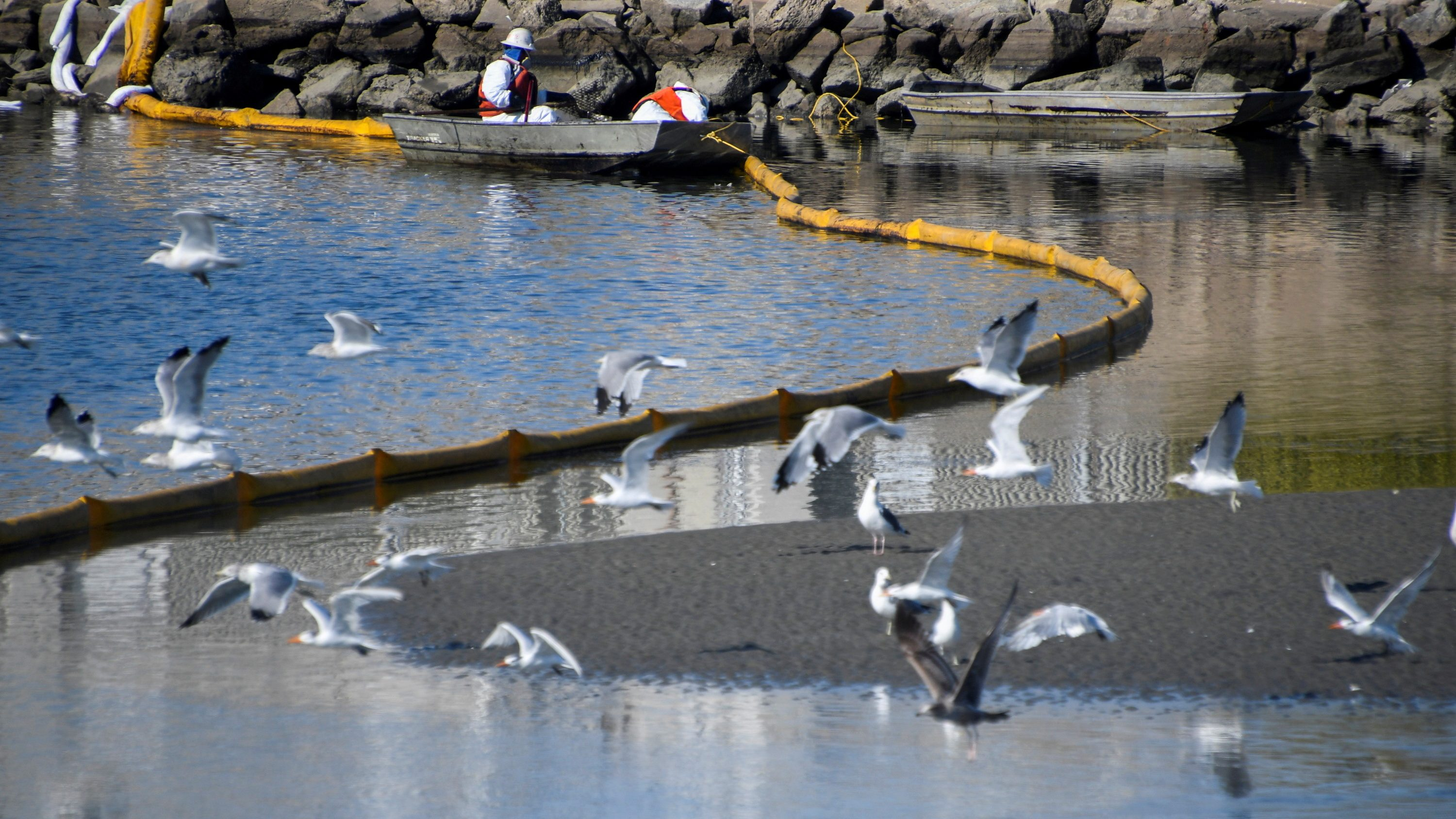 A clean-up team works on clearing the oil slicks at the Talbert Channel after a major oil spill off the coast of California has come ashore in Huntington Beach, California, U.S.